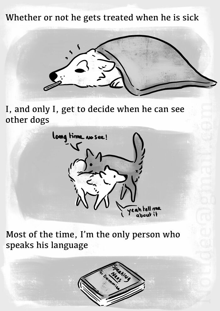 Dogilike.com :: สุดยอดการ์ตูนที่บอกเล่าถึงทัศนคติที่ผิดเพี้ยนที่ว่า ก็แค่สุนัข