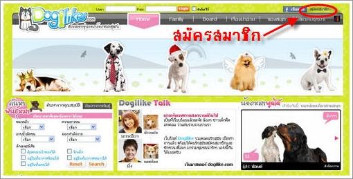 Dogilike.com :: Dogilike ชุมชนออนไลน์ของคนรักสุนัข