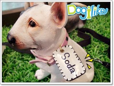 Dogilike.com :: ฝึกน้องหมาให้ไม่สร้างความเดือดร้อนให้เพื่อนบ้าน