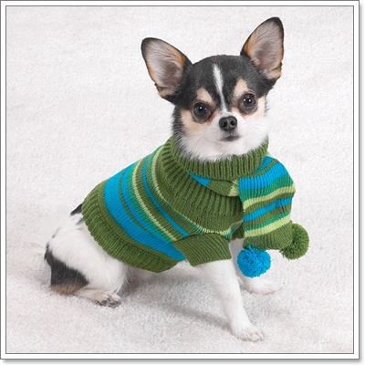 Dogilike.com :: แฟชั่นเสื้อหนาวของน้องหมา