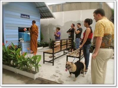Dogilike.com :: Pet Master บริการรับฌาปณกิจสัตว์เลี้ยง