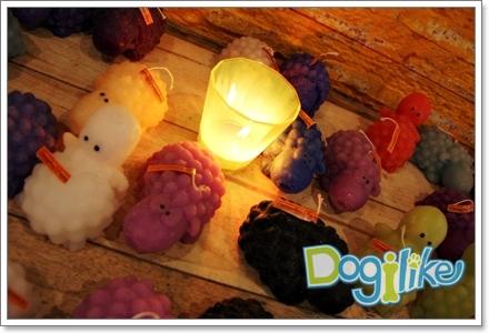 Dogilike.com :: REVIEW : พาน้องหมาไปเที่ยวชิลๆ ที่สวนผึ้ง
