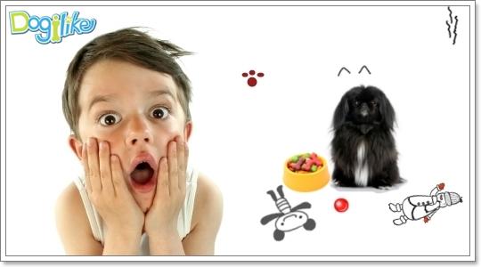 Dogilike.com :: ��ô����١�عѢ�ѹ������