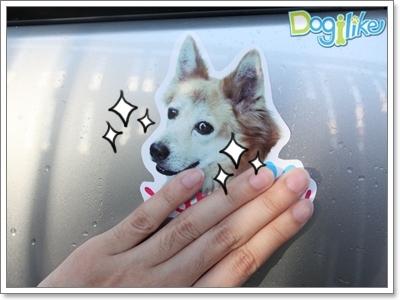 Dogilike.com :: REVIEW  สติ๊กเกอร์น้องหมา