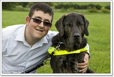 Dogilike.com :: สุนัขนำทางอังกฤษกินแต่ผัก เหตุแพ้เนื้อสัตว์!