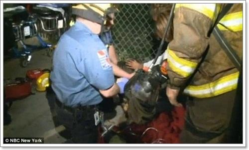Dogilike.com :: หวุดหวิด!พิทบูลรอดตายจากอุบัติเหตุไฟไหม้