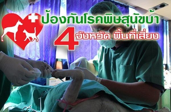 Dogilike.com :: กรมปศุสัตว์ นนทบุรี ผ่าตัดทำหมันฉีดวัคซีนฟรี !