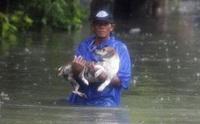 โลกซึ้ง! ฟิลิปปินส์ส์พายุซัด ไม่หวั่นช่วยสุนัขหนีน้ำ