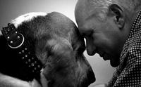 โรคอัลไซเมอร์ในสุนัข