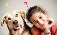 12 คำถามเกี่ยวกับสุขภาพ ที่คนรักสุนัขสนใจมากที่สุดในปี 2012