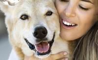 เคล็ด(ไม่)ลับในการดูแลน้องหมาให้มีสุขภาพดีตลอดปี 2013