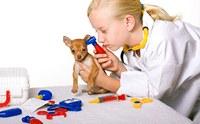 การตรวจร่างกายน้องหมา ฉบับ (เจ้าของ) มืออาชีพ