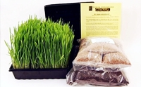 Pet Grass ข้าวสาลีออร์แกนิค