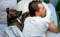 ไขข้อข้องใจ ... จริงหรือไม่ ขน-เห็บ สุนัขเข้าไปในร่างกายคนได้?