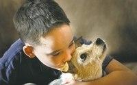 ชีวิตที่มีน้องหมา....เปลี่ยนแปลงสิ่งใดในตัวเราบ้าง?