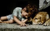 ป้องกันโรคเรบีส์ ... สอนเด็กอย่างไรไม่ให้ถูกสุนัขกัด