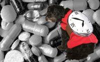วิธีแก้ปัญหาเมื่อลืมป้อนยาให้น้องหมา