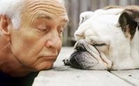 ภาพประทับระหว่างผู้สูงวัยกับน้องหมา
