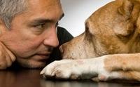 สุดยอดเทคนิคการฝึกสุนัขจากผู้ฝึกสุนัขชื่อดังของโลก!!