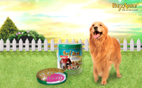 Review : บักซ์อเวย์ ยาจุดกันยุงสำหรับสุนัข