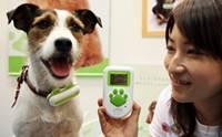 6 เทคโนโลยีสุดล้ำที่ใช้ในการเลี้ยงน้องหมา