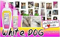 Review : White Dog แชมพูฟอกขนขาว