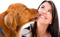 รวมภาพน้องหมาที่แสดงความรักกับเจ้านายสุดเลิฟ