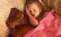 คลิปซึ้ง! ความผูกพันแสนน่ารักของเด็กหญิงออทิสติกกับสุนัขคู่ใจ
