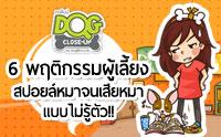 6 พฤติกรรมผู้เลี้ยง สปอยล์หมาจนเสียหมาแบบไม่รู้ตัว !! [Infographic]
