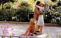 8 หนังรักโรแมนติก ที่อาจทำให้อยากเลี้ยงน้องหมา