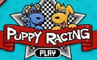 Puppy Racing เจ้าตูบนักแข่งรถ