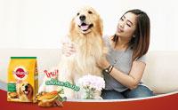 Review: อาหารสุนัขเพดดิกรี® สูตรสุนัขโตเต็มวัย ใหม่! รสไก่และตับย่าง