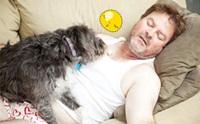 รวมภาพน่ารักๆ เมื่อน้องหมาขอนอนด้วย