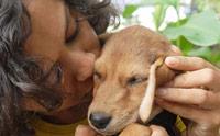 10 ข้อดี! ที่คุณอาจนึกไม่ถึงเมื่อรับเลี้ยงหมาไร้บ้าน