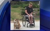 เรื่องราวสุดประทับใจ! เมื่อชายผู้พิการรับเลี้ยงอดีตสุนัขที่เคยถูกทารุณ