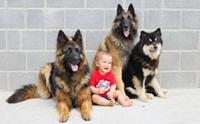 น้องหมาบิ๊กไซส์กับเด็กน้อย