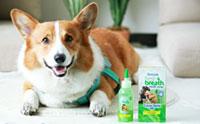 น้องหมาลมหายใจสดชื่นไร้กลิ่นปากด้วย TropicleanTeethGel