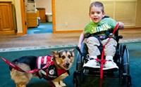 ให้สุนัขพบคนไข้ในโรงพยาบาล ช่วยบำบัดหรือช่วยระบาด?