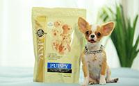 ตอบโจทย์การดูแลสุขภาพลูกสุนัขด้วย ANF Puppy Super Premium