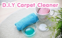 D.I.Y Carpet Cleaner ���������������͹