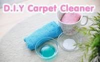 D.I.Y Carpet Cleaner พรมขาวไร้รอยเปื้อน