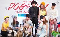 Dogilike พารีวิว The Circle Dogs Day @เดอะเซอร์เคิล ราชพฤกษ์