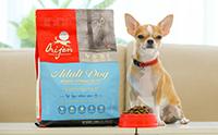 อาหารสุนัข Orijen กับรางวัลชนะเลิศอาหารที่มีความเหมาะสมด้านชีวภาพ