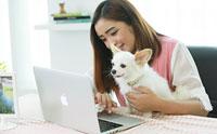ช้อปปิ้งสินค้าสุนัขออนไลน์คุณภาพดีราคาโดนใจที่ ORAMI by Moxy