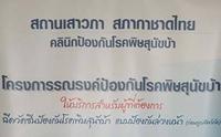สภากาชาดไทย เชิญฉีดวัคซีนป้องกันโรคพิษสุนัขบ้าแบบป้องกันล่วงหน้า ฟรี !!