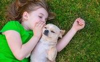 เผยความลับของ 10 สายพันธุ์สุนัขที่คุณอาจไม่เคยรู้มาก่อน