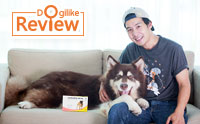 Review : จัดการปัญหาเห็บหมัดกวนใจน้องหมาไซส์ไจแอ้นท์ด้วย