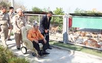 ศูนย์รักษ์สุนัขหัวหิน โครงการในพระราชดำริเพื่อช่วยเหลือสุนัขจรจัด