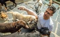 เรื่องราวของหนุ่มวิศวกรซอฟแวร์ ผู้เป็นที่พึ่งสุนัขท้ายของสุนัขจรจัด 735 ตัว !!
