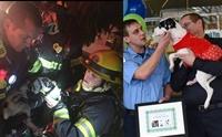 ปลื้ม! ทีมนักดับเพลิงไม่ทอดทิ้ง เสี่ยงชีวิตช่วยลูกสุนัขติดอยู่ในบ้านไฟไหม้